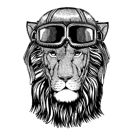 Wild lion. Animal wearing aviator helmet with glasses. Vector picture.