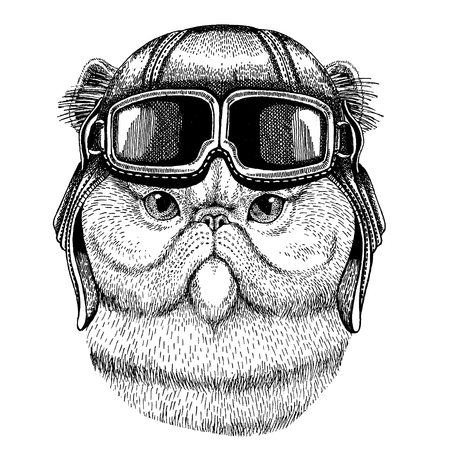 Animal wearing aviator helmet with glasses. Stock Illustratie