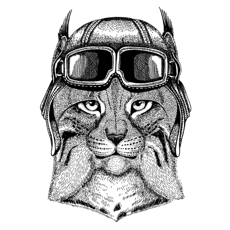 Animal wearing aviator helmet with glasses. Illusztráció