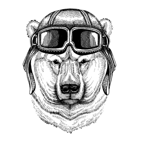 Animal wearing aviator helmet with glasses. Ilustração