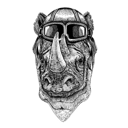 Animal wearing aviator helmet with glasses. 向量圖像