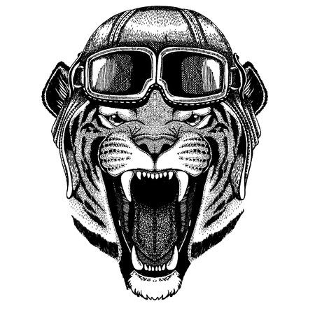 Animal wearing aviator helmet with glasses.  イラスト・ベクター素材