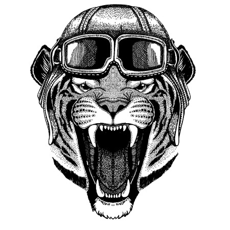 Animal wearing aviator helmet with glasses. Vectores