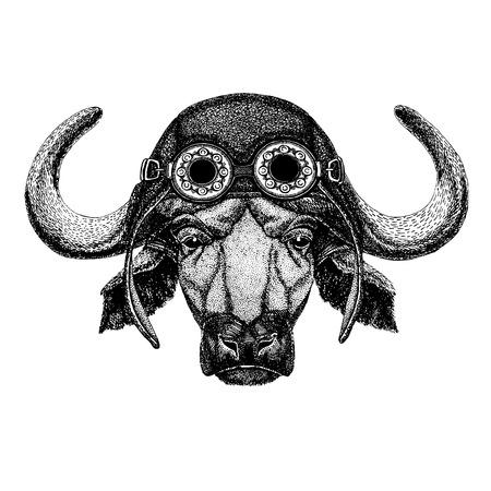 Cute animal wearing motorcycle, aviator helmet Buffalo, bull, ox Hand drawn illustration for tattoo, emblem, badge, logo, patch, t-shirt Illustration