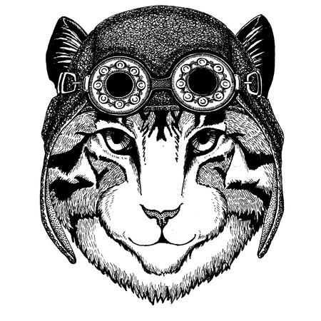 Cute animal wearing motorcycle, aviator helmet Image of domestic cat Hand drawn illustration for tattoo, emblem, badge, logo, patch, t-shirt Illustration