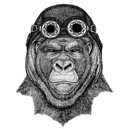 Cute animal wearing motorcycle, aviator helmet Gorilla, monkey, ape Frightful animal Hand drawn image for tattoo, emblem, badge, logo, patch