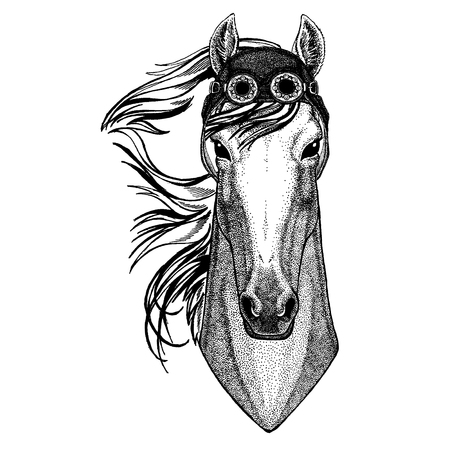 Cute animal wearing motorcycle, aviator helmet Horse, hoss, knight, steed, courser Hand drawn image for tattoo, emblem, badge, logo, patch, t-shirt Illustration
