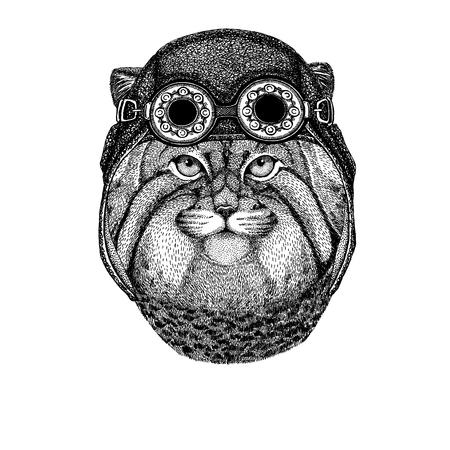 Cute animal wearing motorcycle, aviator helmet Ilustracja
