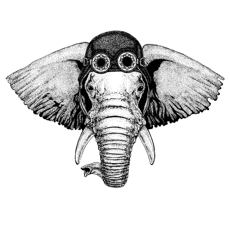 Cute animal wearing motorcycle, aviator helmet African or indian Elephant Hand drawn illustration for tattoo, emblem, badge, logo, patch, t-shirt