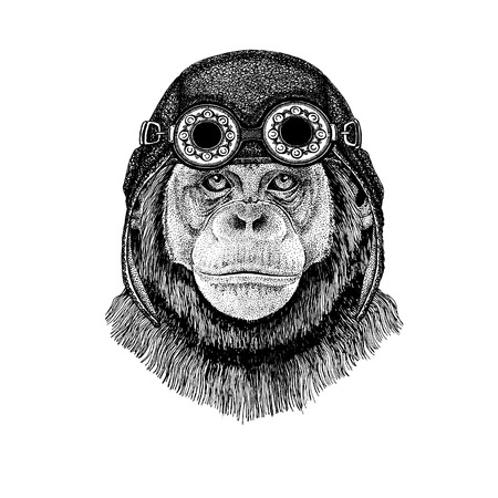 Cute animal wearing motorcycle, aviator helmet Chimpanzee Monkey Hand drawn illustration for tattoo, emblem, badge, logo, patch, t-shirt