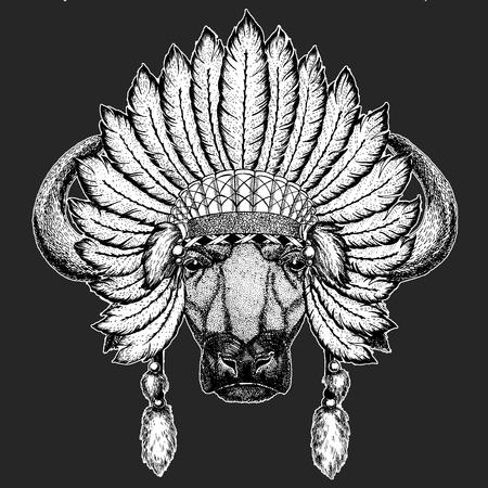 63c15860f128e Buffalo, bull, ox Traditional ethnic indian boho headdress Tribal shaman  hat Ceremonial element