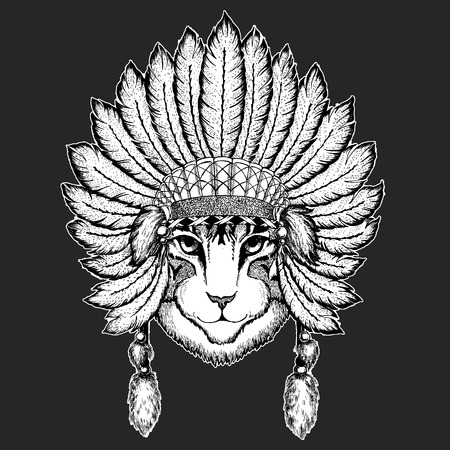 Image of domestic cat Traditional ethnic indian boho headdress Tribal shaman hat Ceremonial element