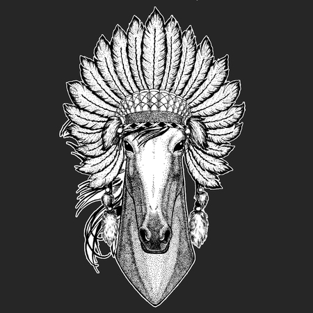 Horse, hoss, knight, steed, courser Traditional ethnic indian boho headdress Tribal shaman hat Ceremonial element Illustration