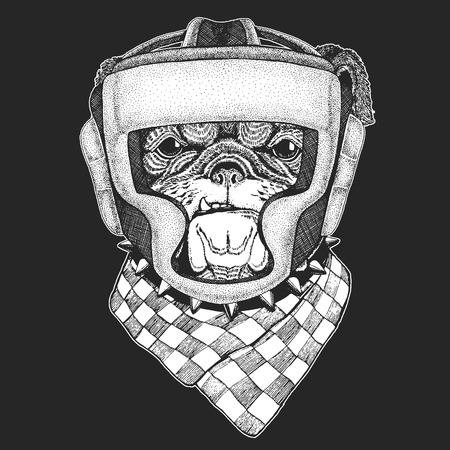 Athletic animal Bulldog, dog. Boxing champion.Print for t-shirt, emblem.Martial arts. Vector illustration with fighter. Sport competition. Ilustracja