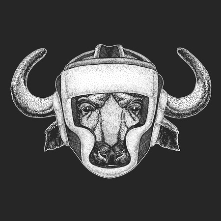Athletic animal. Buffalo, bull, ox. Boxing champion. Print for t-shirt, emblem.Martial arts. Vector illustration with fighter. Sport competition. Ilustração