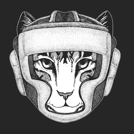 Athletic animal Domestic cat. Boxing champion. Print for t-shirt, emblem.Martial arts. Vector illustration with fighter. Sport competition.