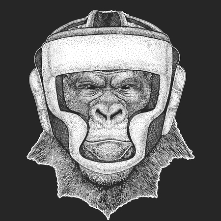 Athletic animal Gorilla, monkey, ape Boxing champion. Athletic animal Boxing champion.  Martial arts.  Sport competition.
