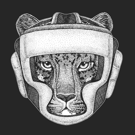 Athletic animal Boxing champion. Wild cat Leopard Cat-o-mountain Panther Print for t-shirt, emblem. Martial arts. Vector illustration with fighter. Sport competition.