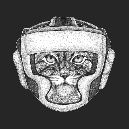 Athletic animal Wild cat Manul Boxing champion. Athletic animal Boxing champion.  Martial arts. Vector illustration with fighter. Sport competition. 向量圖像