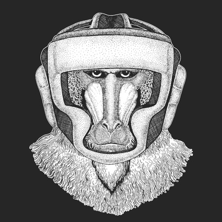 Athletic animal Boxing champion. Monkey, baboon, dog-ape, ape Print for t-shirt Martial arts. Vector illustration with fighter. Sport competition.