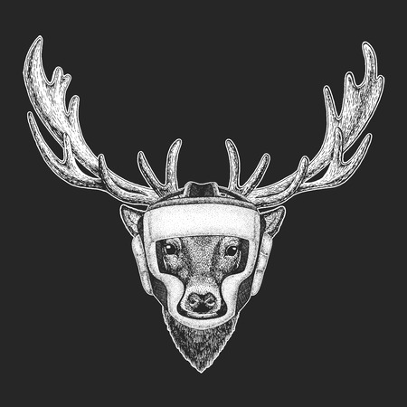 Athletic animal Deer Boxing champion. Print for t-shirt, emblem  . Martial arts. Vector illustration with fighter. Sport competition.
