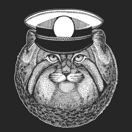Wild cat Manul Vector print for children. Capitan, pirate animal. Brave sailor. Design for kindergarten, school kids clothing, t-shirts. Standard-Bild - 103668888