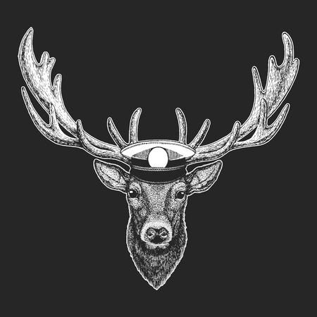 Deer Hand drawn illustration for tattoo, emblem, badge, logo, patch t-shirt