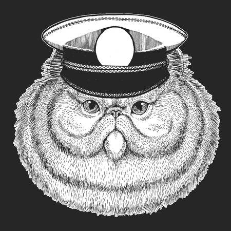 Persian cat Vector print for children. Capitan, pirate animal. Brave sailor. Design for kindergarten, school kids clothing, t-shirts. 向量圖像