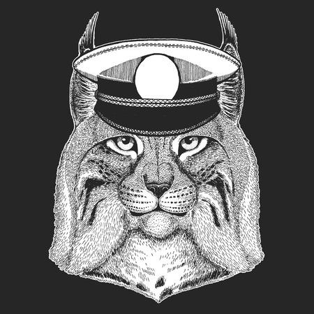 Wild cat, Lynx, Bobcat, Trot Vector print for children. Capitan, pirate animal. Brave sailor. Design for kindergarten, school kids clothing, t-shirts. Archivio Fotografico - 103668889