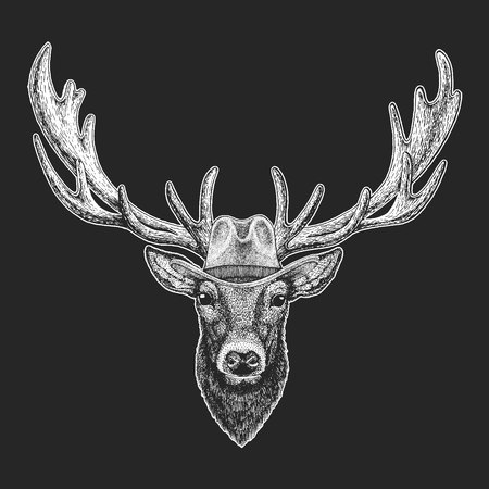 Deer. Wild west. Traditional american cowboy hat. Texas rodeo. Print for children, kids t-shirt.