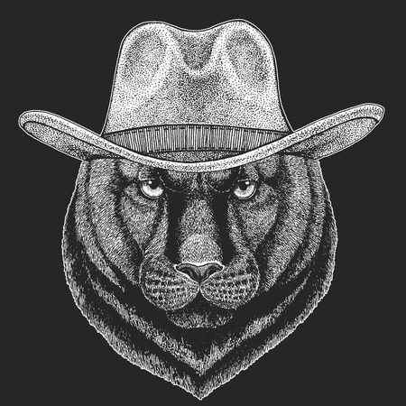 Panther, Puma, Cougar, Wild cat. Wild west. Traditional american cowboy hat. Texas rodeo. Print for children, kids t-shirt.