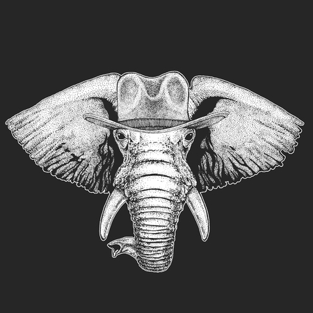 African or indian Elephant Wild west. Traditional american cowboy hat. Texas rodeo. Print for children, kids t-shirt. Иллюстрация