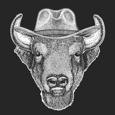 Buffalo, bison,ox, bull. Wild west. Traditional american cowboy hat. Texas rodeo. Print for t-shirt. Illustration