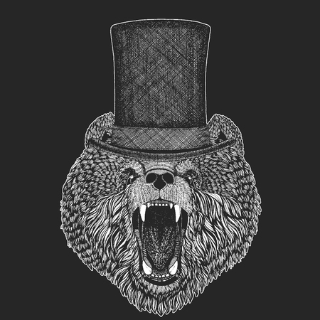 Bear Top hat, cylinder. Hipster animal, gentleman. Classic headdress. Print for children t-shirt, kids clothing.
