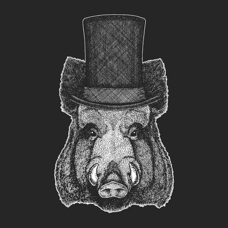 Aper, boar, hog, wild boar Top hat, cylinder. Hipster animal, gentleman. Classic headdress. Print for children t-shirt, kids clothing. Illustration