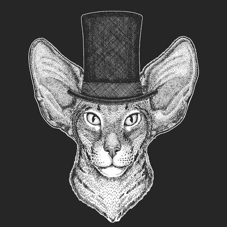Top hat, cylinder. Hipster animal, gentleman. Classic headdress. Print for children t-shirt, kids clothing. Illustration