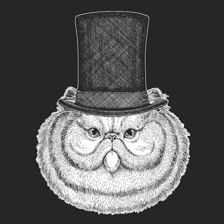 Cat Top hat, cylinder. Hipster animal, gentleman. Classic headdress. Print for children t-shirt, kids clothing. Illustration