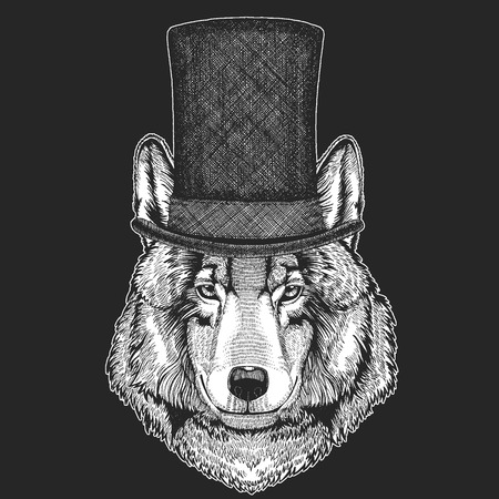 Wolf, dog. Top hat, cylinder. Hipster animal, gentleman. Classic headdress. Print for children t-shirt, kids clothing. Ilustrace