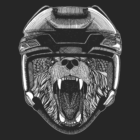 Wild animal wearing hockey helmet. Print for t-shirt designs Illustration