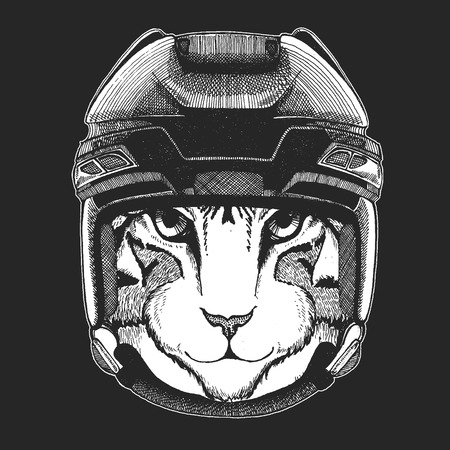 Image of domestic cat Wild animal wearing hockey helmet. Print for t-shirt design.