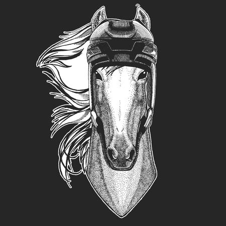 Horse, hoss, knight, steed, courser Wild animal wearing hockey helmet. Print for t-shirt design.