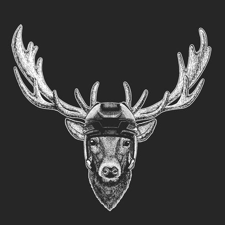 Deer Wild animal wearing hockey helmet. Print for t-shirt design.
