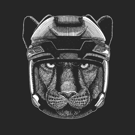 Wild animal wearing hockey helmet. Print for t-shirt design.