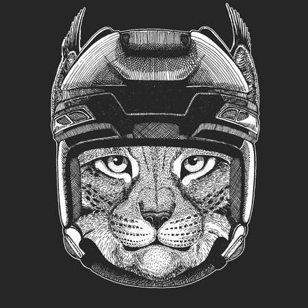 Wild cat Lynx  Trot Wild animal wearing hockey helmet. Print for t-shirt design. Illustration
