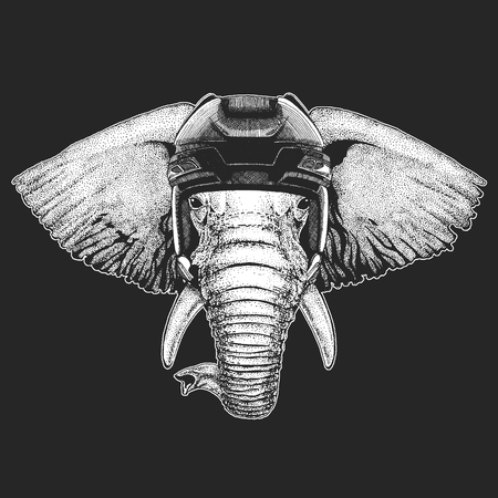 African or indian Elephant Wild animal wearing hockey helmet. Print for t-shirt design. Illustration