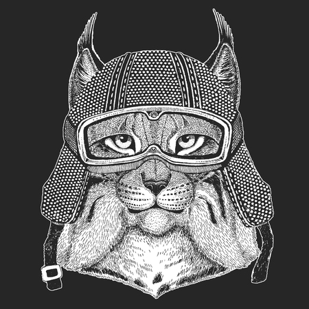 Wild cat, Lynx, Bobcat, Trot Vintage motorcycle hemlet. Retro style illustration with animal biker for children, kids clothing, t-shirts. Fashion print with cool character. Speed and freedom. Archivio Fotografico - 104267981
