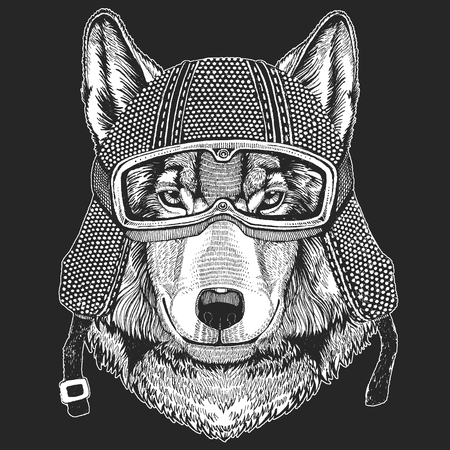Wolf, dog. Vintage motorcycle hemlet. Retro style illustration with animal biker for children, kids clothing, t-shirts. Fashion print with cool character. Speed and freedom. 스톡 콘텐츠 - 104267273