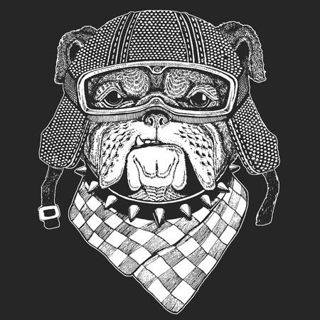 Dog, bulldog. Vintage motorcycle hemlet. Retro style illustration with animal biker for children, kids clothing, t-shirts. Fashion print with cool character. Speed and freedom.