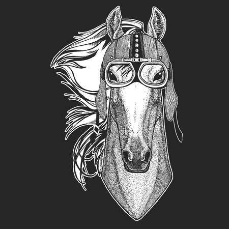 Horse, hoss, knight, steed, courser. Vintage motorcycle hemlet. Retro style illustration with animal biker for children, kids clothing, t-shirts. Fashion print with cool character. Speed and freedom.