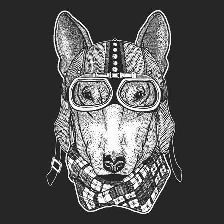 Dog. Vintage motorcycle hemlet. Retro style illustration with animal biker for children, kids clothing, t-shirts. Fashion print with cool character. Speed and freedom. 스톡 콘텐츠 - 104268043